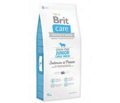 BRIT Care Dog GF Junior L Salmon Potato 1kg
